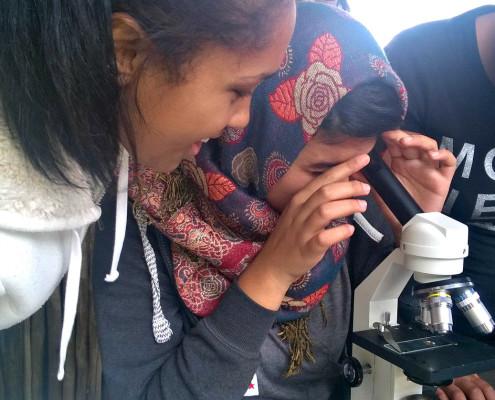 Intaka Microscope